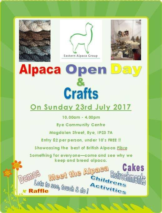 craft show flyer.jpg