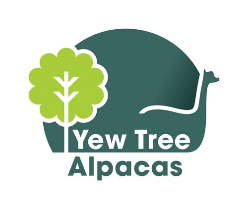 YTA Logo 3