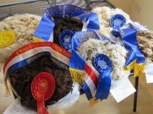 fleece pics