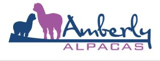 AMBERLY ALPACAS LOGO