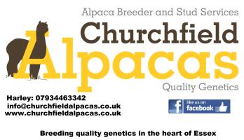Churchfield Alpacas sponser pic