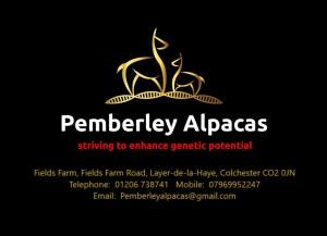 Logo address