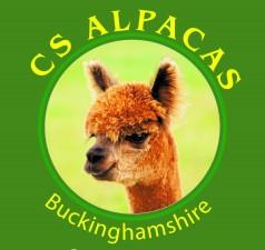 CS alpacas