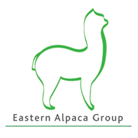 Eastern Alpaca Group UK