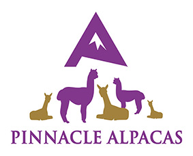 pinnacle-logo-web
